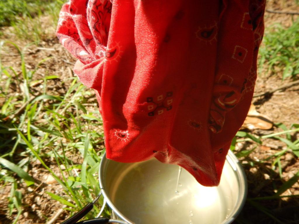 Filtering Water with Cloth