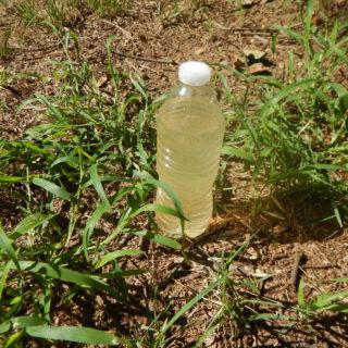 Water in a Plastic Bottle