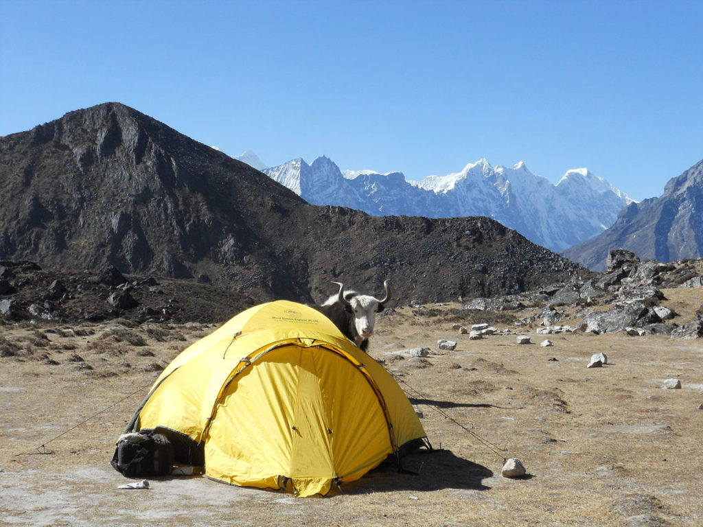 nepal survival tent : best survival tents - afamca.org